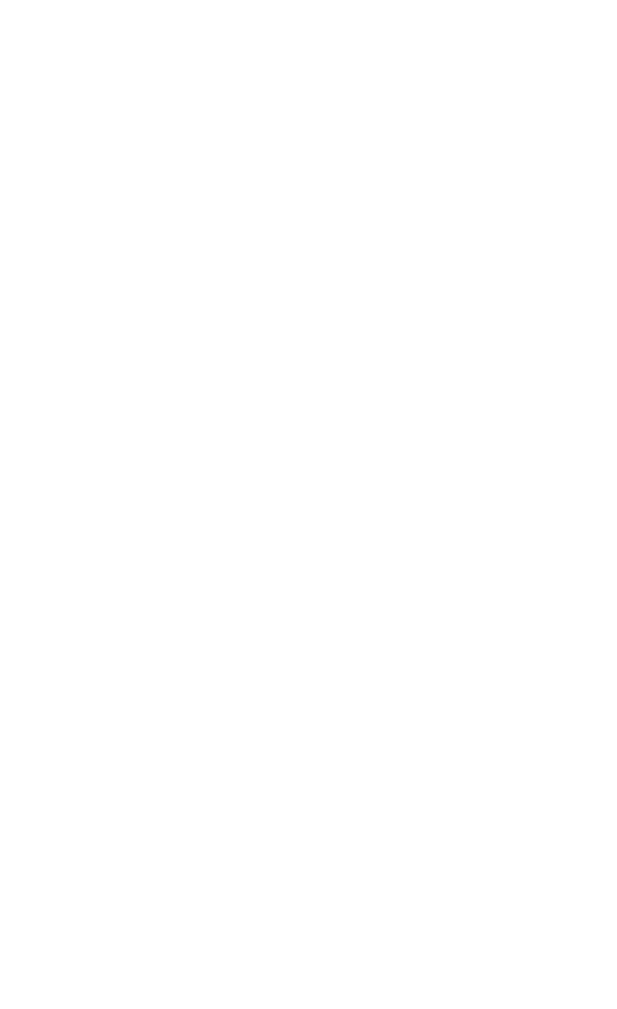 Bear 'N Tree Photography