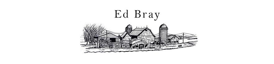 Ed Bray