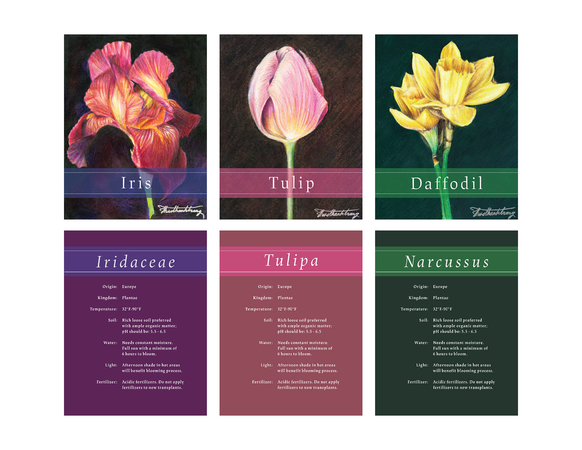 Keypassions Flower Care
