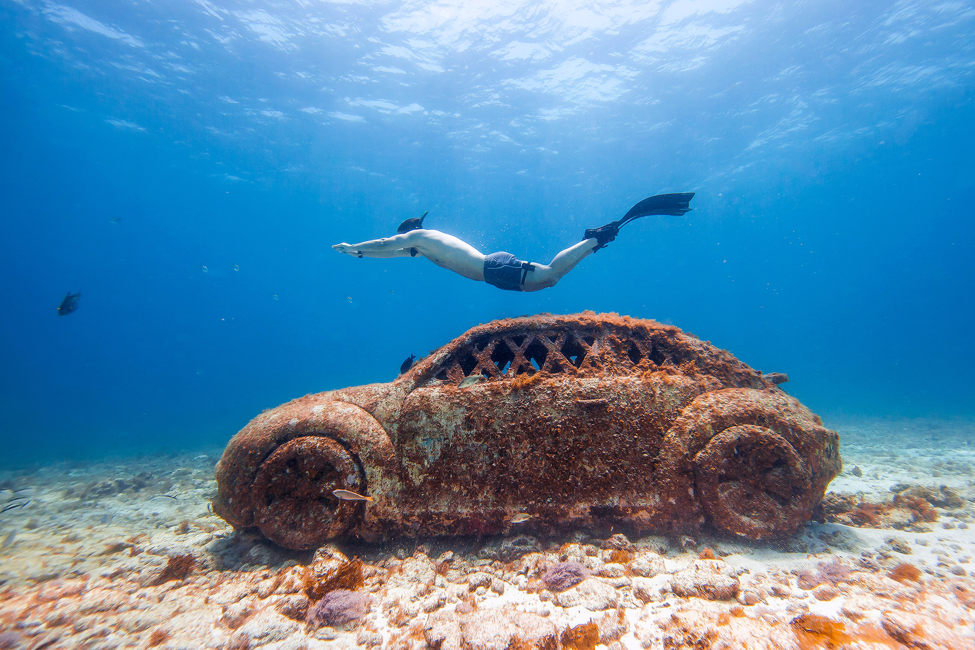 Image result for musa underwater museum cancun