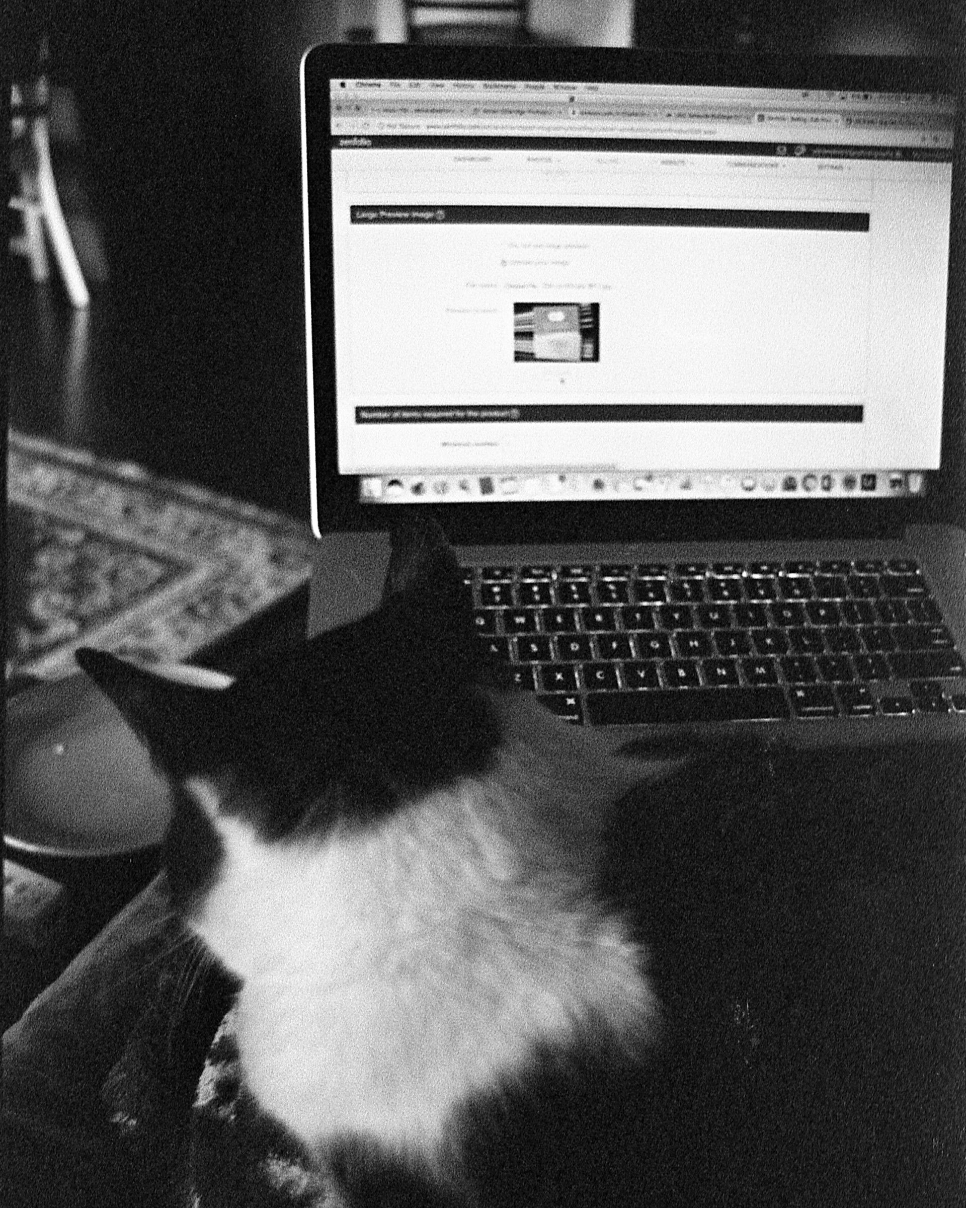 Adrian Etheridge Light Study In Black And White 35mm