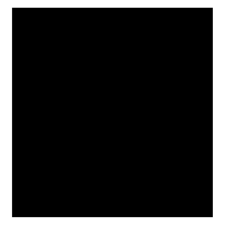 Dominik Kolb