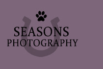 Seasons Photography