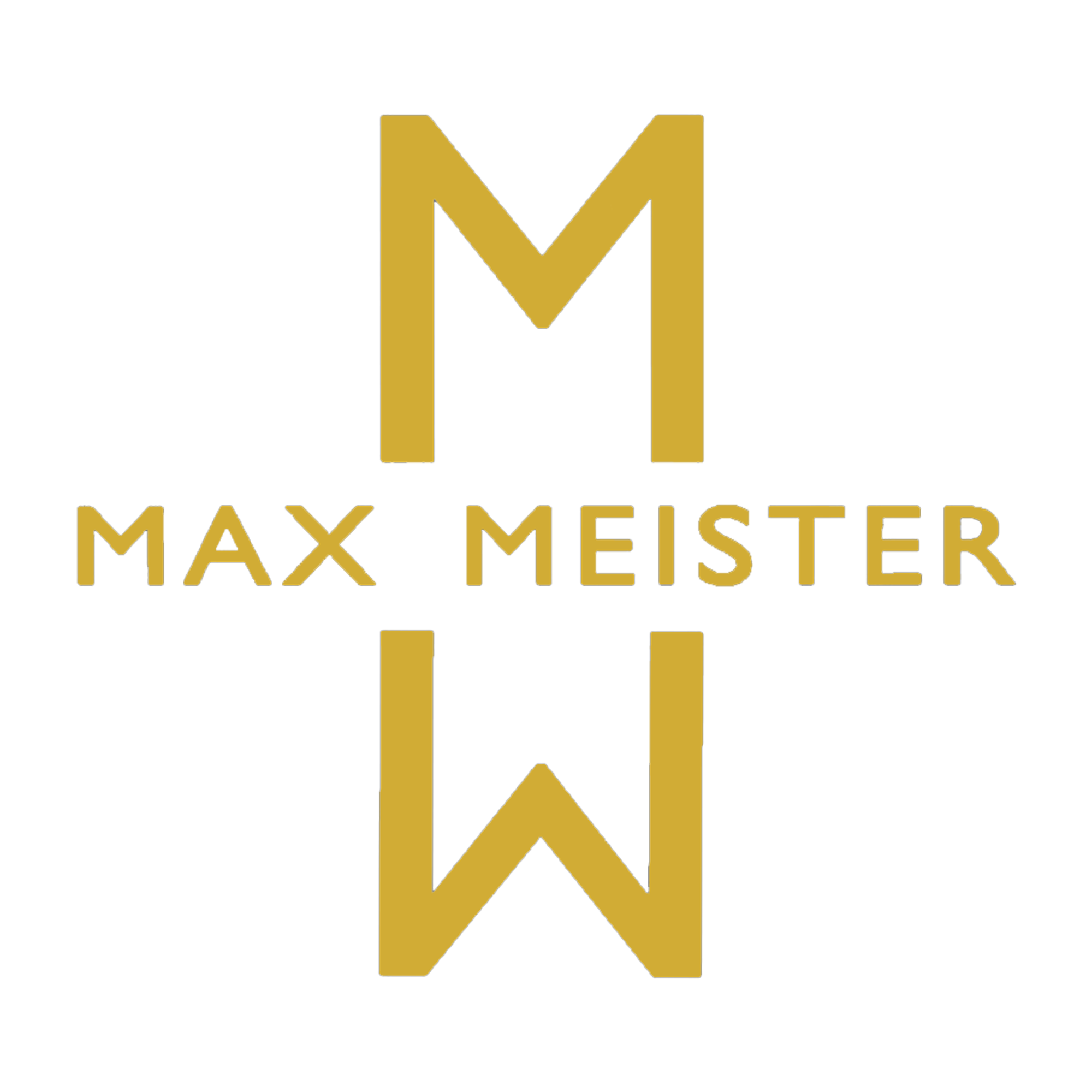 Max Meister