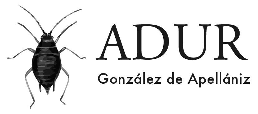 Adur González de Apellániz