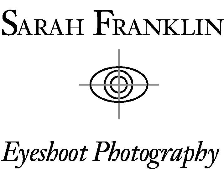 sarah franklin