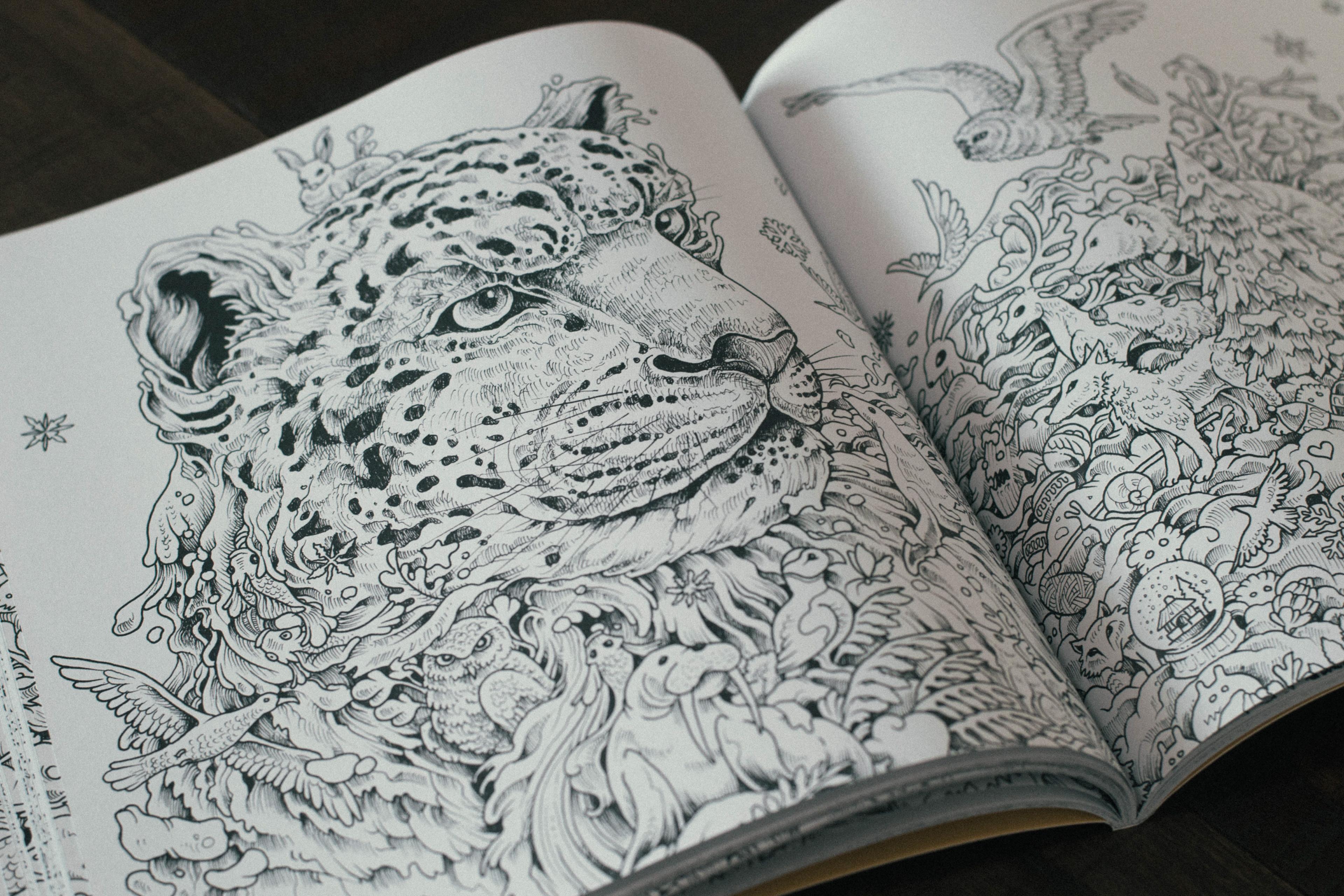 Kerby Rosanes Illustrator Portfolio Imagimorphia