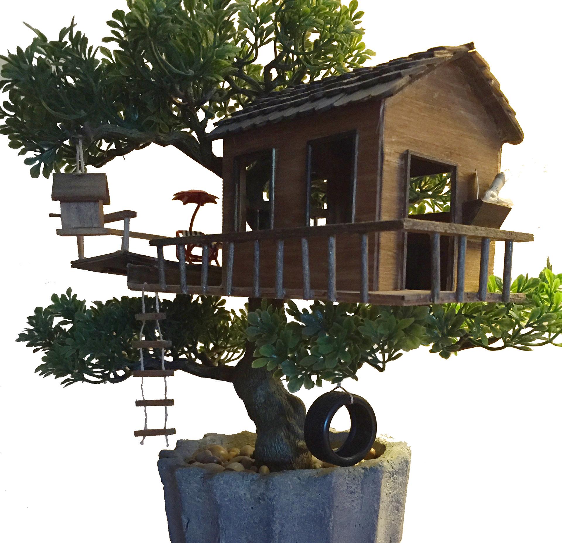 Kristen Deblasi Bonsai Treehouse