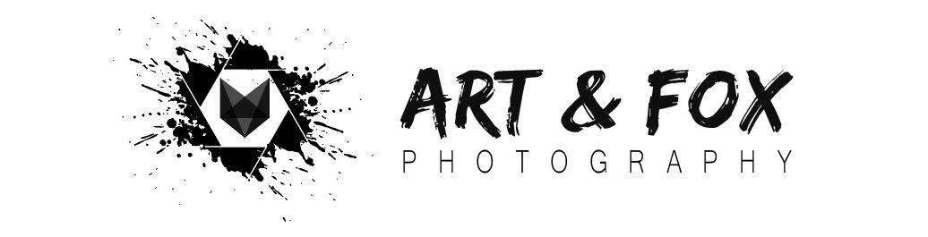 Art&Fox _