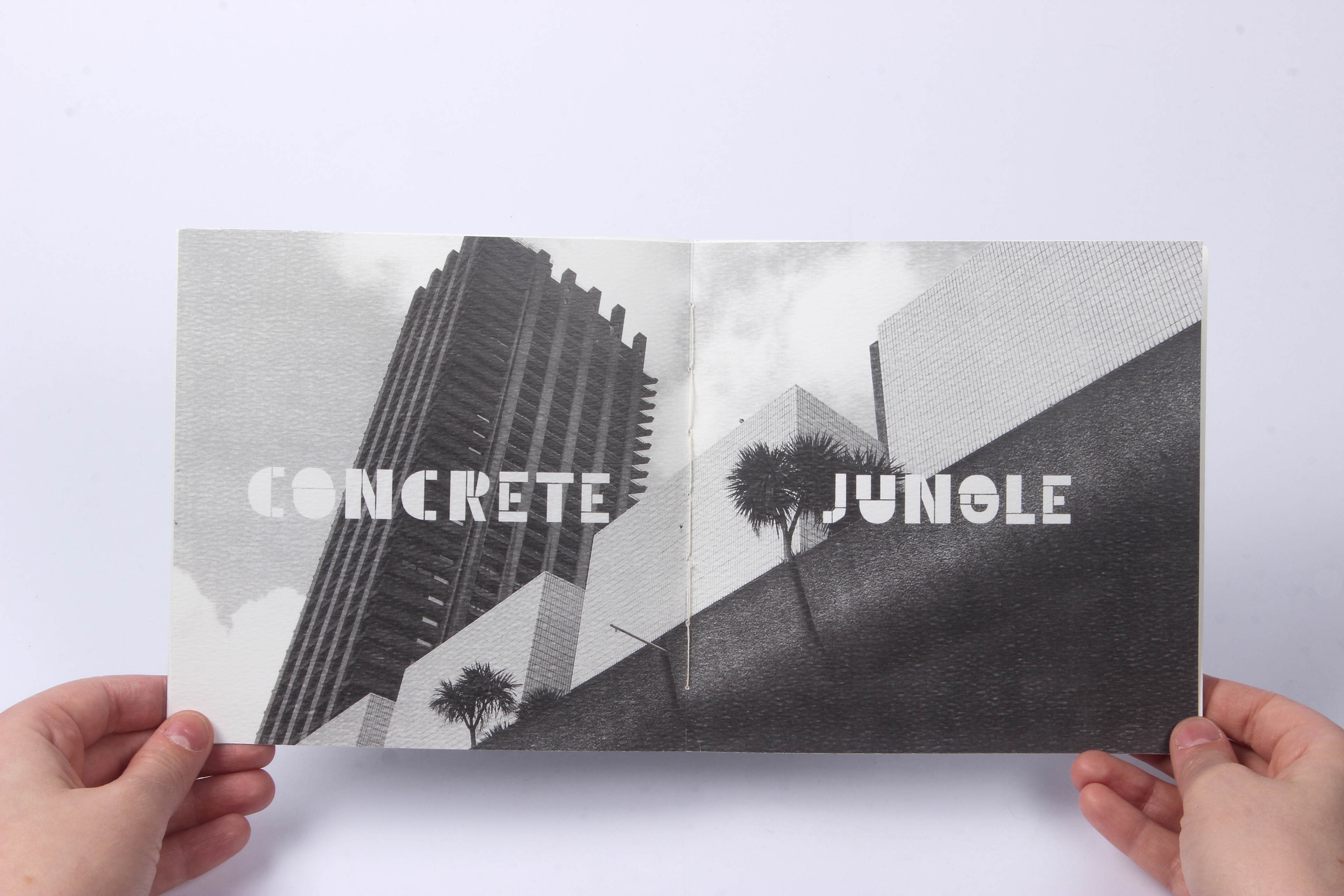 Emily McCarthy - Architectural Type