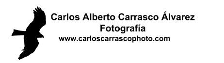Carlos Carrasco Fotografía