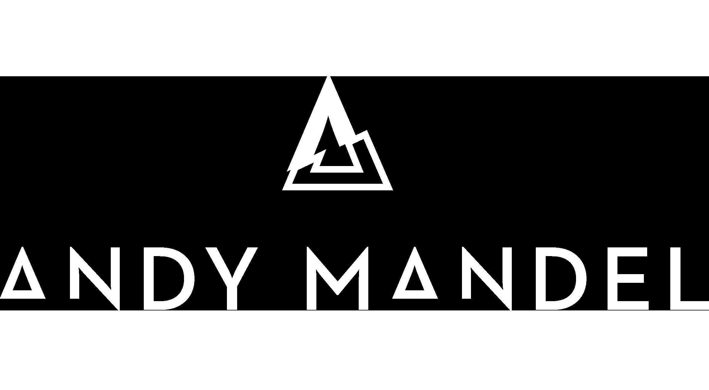 Andy Mandel