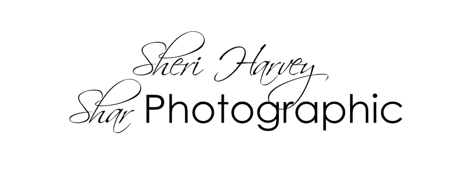 Sheri Harvey