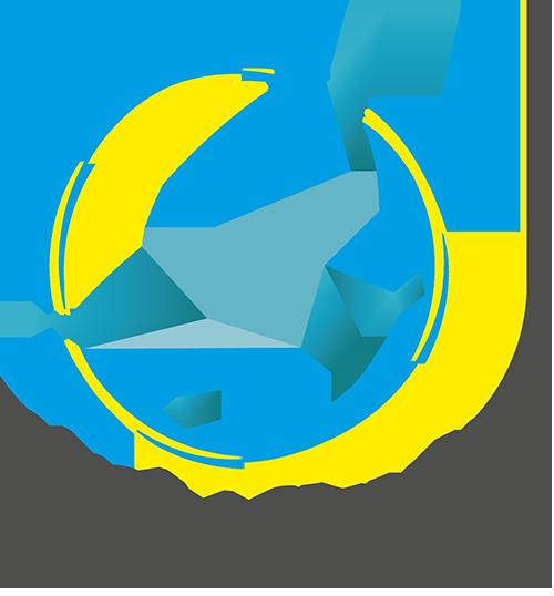 Birdy Studio
