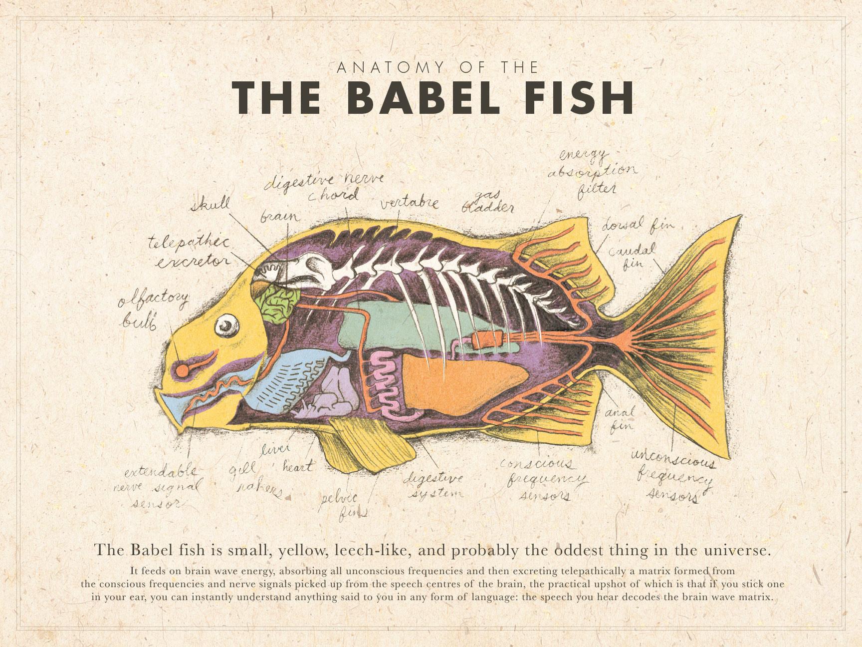 Viet Triet Nguyen - Babel Fish Anatomy