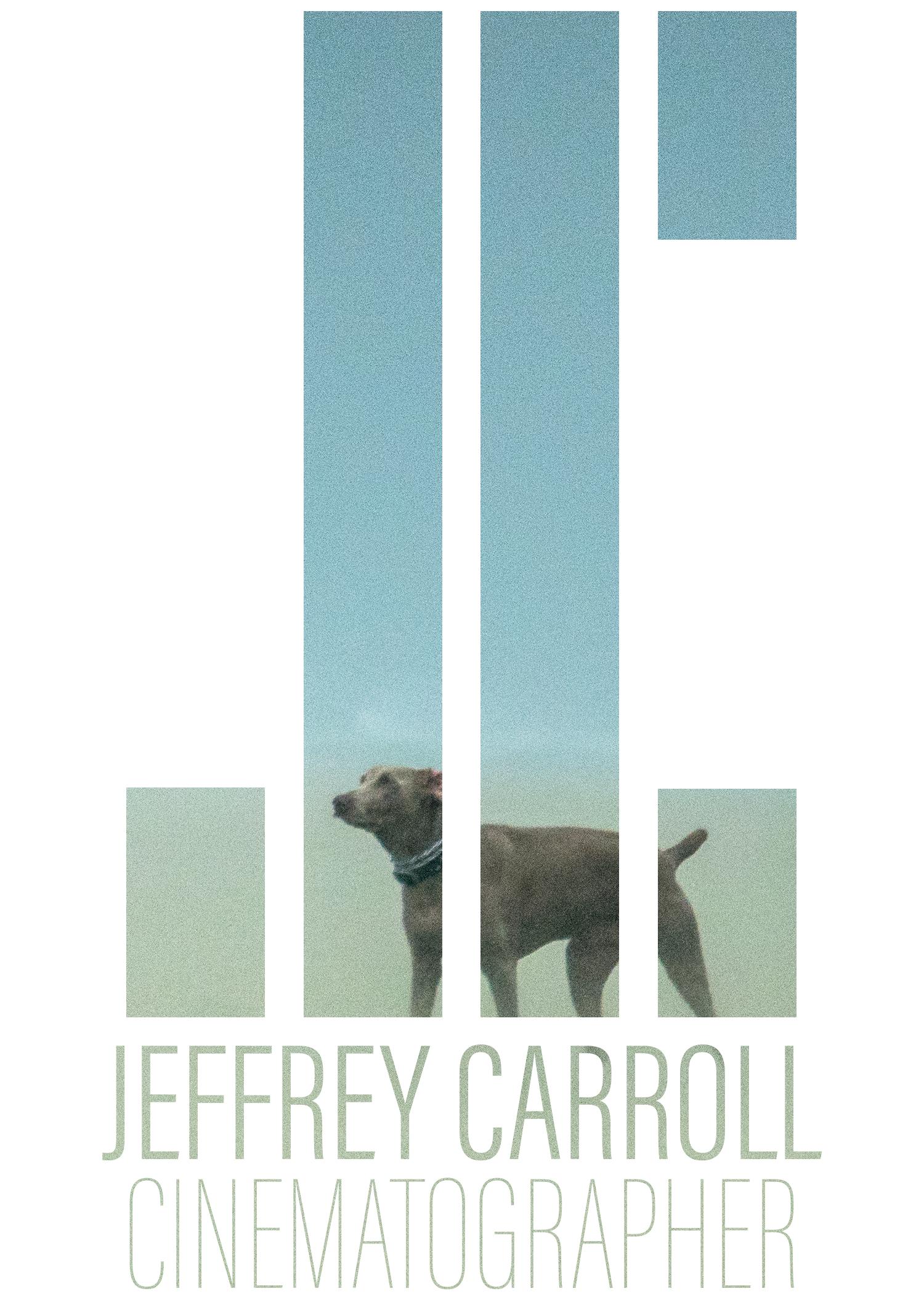 Jeffrey Carroll