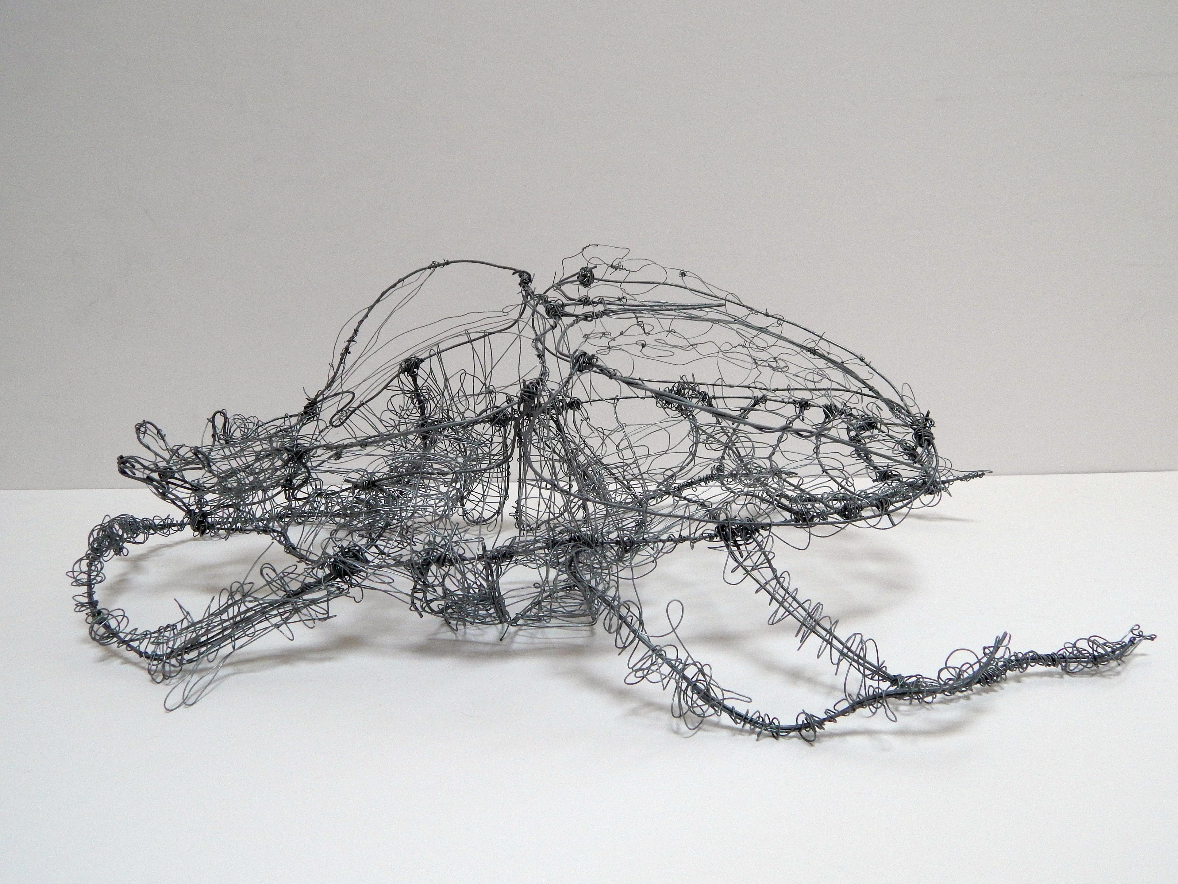 Jeffrey Xu - Wire Beetle
