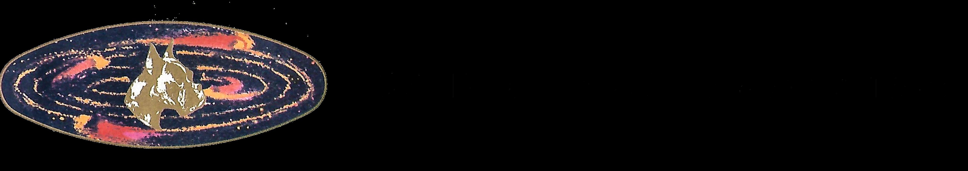 Boxer della Galassia dal 1975