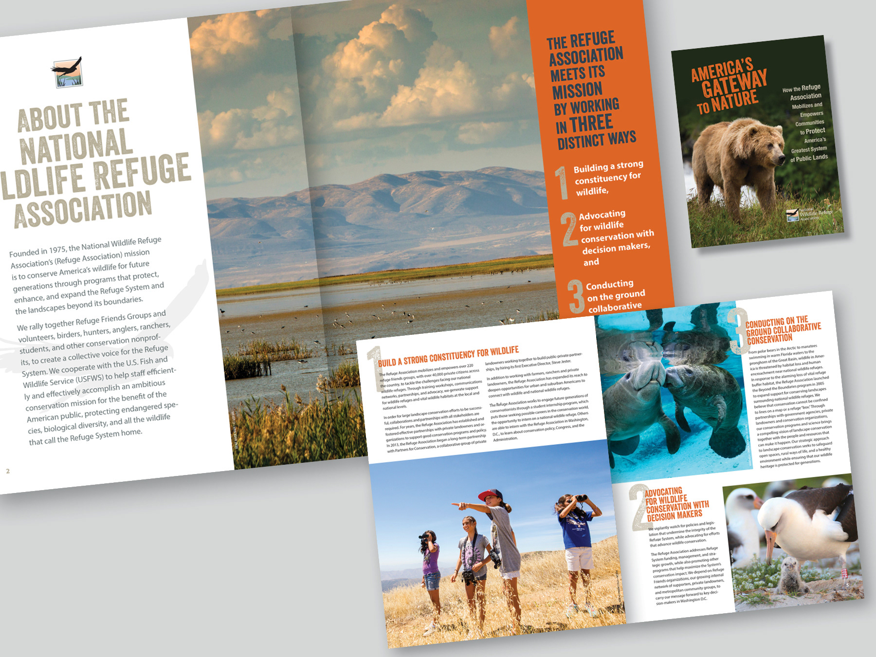 Cissy Russell - Reports & Brochures