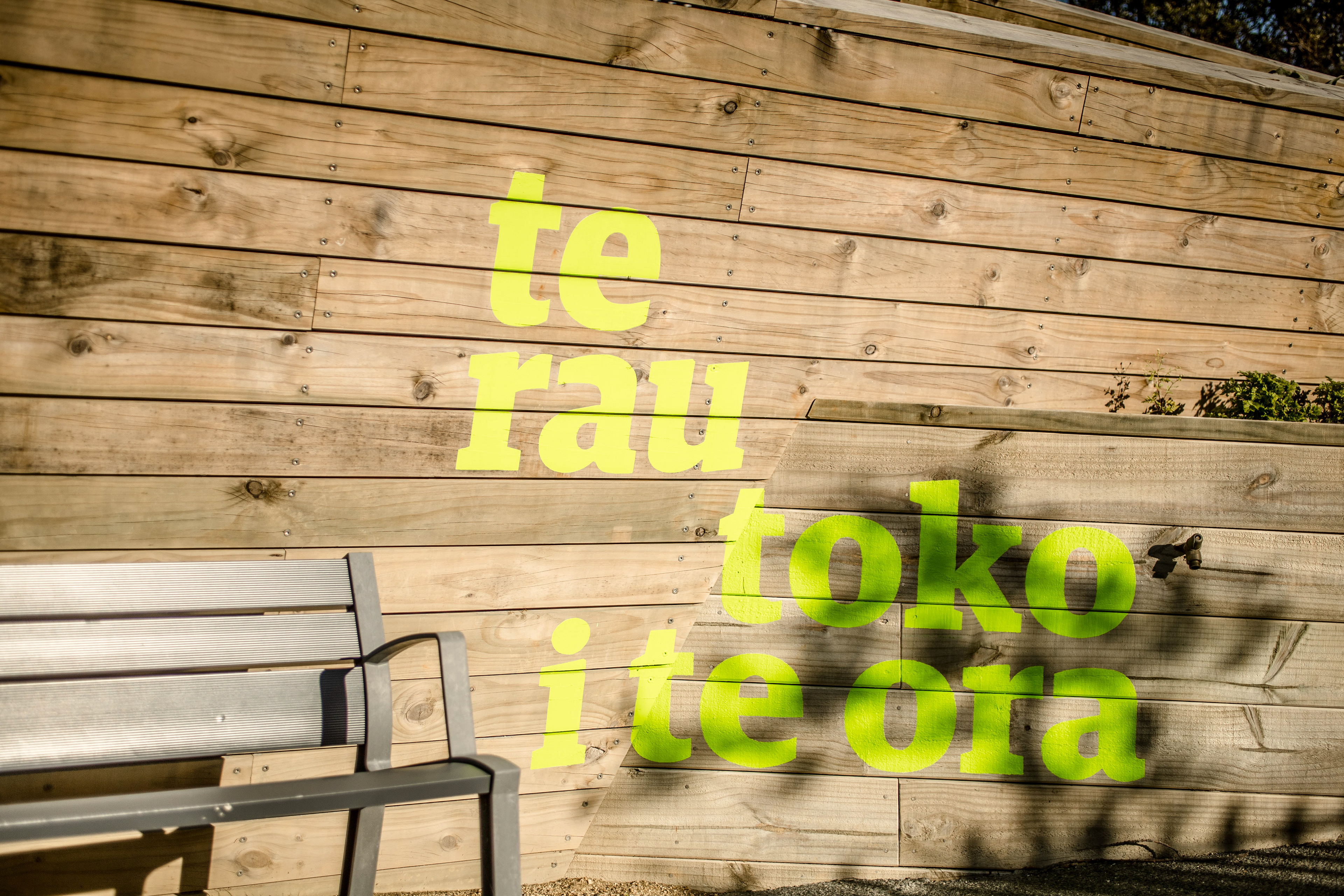 Creative and Brand - Te Kaapuia o Te Waoku